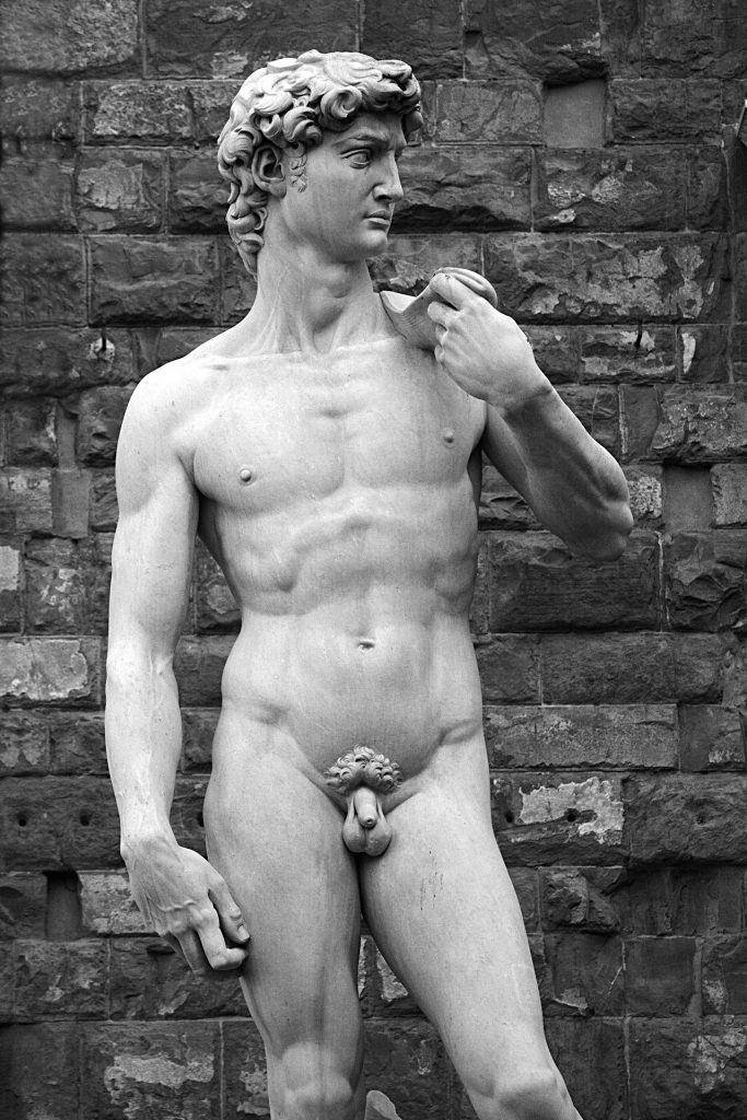 Michelangelova socha Davida